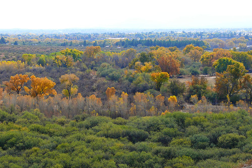 Fall in Tuzigoot National Monument