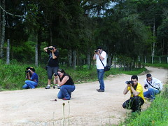 Making of - Flickr Churras! (Matheus Lincoln) Tags: makingof makingoff fotgrafos photografer flickrcuritiba arquivomatheuslincoln cludiaregina gizelamocelin flickrchurras fabibaioni