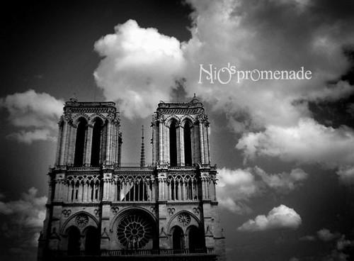 你拍攝的 Notre Dame。