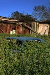 Decay (Uncle Berty) Tags: uk blue england car rural rust iron decay shed rusty nettles berty brill bucks smalls hp18 robfurminger