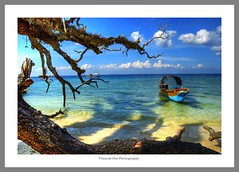 The Boat and The Tree (lighttripper) Tags: sea sun india islands sand and andaman