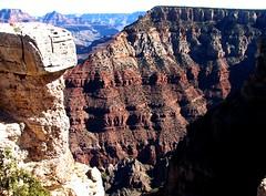 Grand Canyon National Park, Arizona - USA (Mic V.) Tags: park arizona cliff usa tree nature rock america river landscape us colorado plateau south united grand canyon basin national limestone layer states geology rim paysage arbre parc sedimentary rocher unis roche fleuve kaibab amrique etats amerique tats ongtupqa