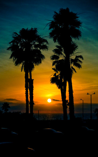 Sunset Ridazz