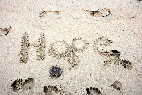 hope always wins over doubt