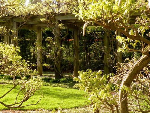 Visit: Longwood Gardens blog image 9