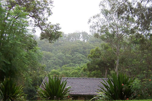 View of Rumbalara Reserve from Bay View Avenue East Gosford