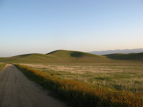 Morning on the Carrizo Plain