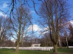 0319 Commonwealth War Graves (golli43) Tags: berlin cemetery germany memorial soldiers westend charlottenburg wargraves secondworldwar britishsoldiers australiansoldiers heerstrasse alliedsoldiers