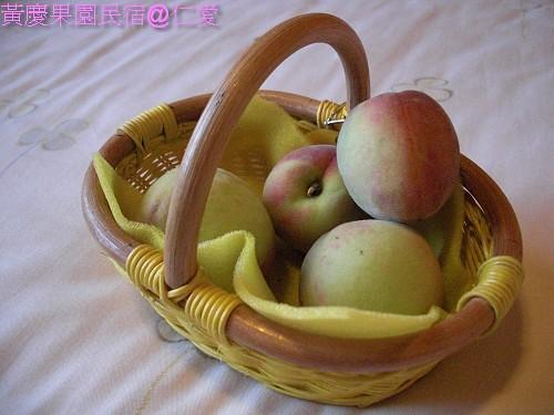 黃慶果園民宿CIMG2482