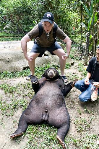 Me & The Bear