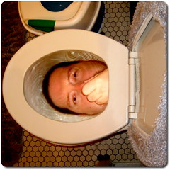 Day 82:  I hate plumbing (Catgunner) Tags: underwater gimp toilet potty year1 cubism thefunhouse headintoilet fgr 365days nobodywantstouseourbathroomanymore
