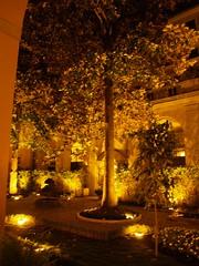 Palazzo Cardinal Cesi, Roma (Panareadise) Tags: panarea