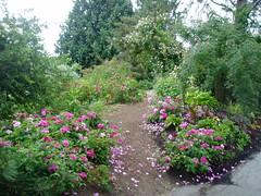 Entrance to Rose Garden