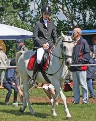 IMG_6803 (Ingrid A.-J.) Tags: reiter pferde reiten nordhackstedt sommerfest2008 rsgsderhof