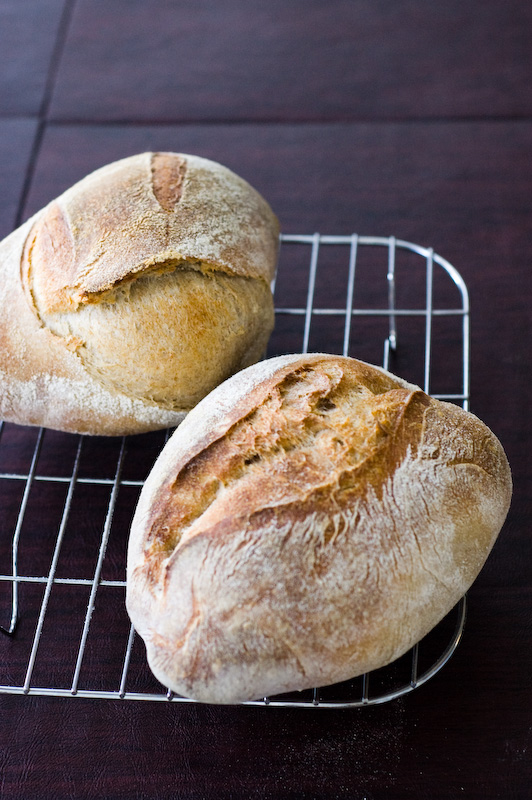 Sourdough Chronicles: Funny looking bread but mighty good tasting.