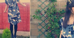 garden (miss sundress) Tags: red girl fence garden diptych dress