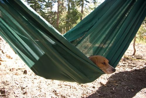 Lake basing Camping-23