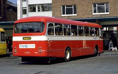 167-23 (Sou'wester) Tags: bus buses scotland dundee alexander rearview publictransport tayside psv backendofabus