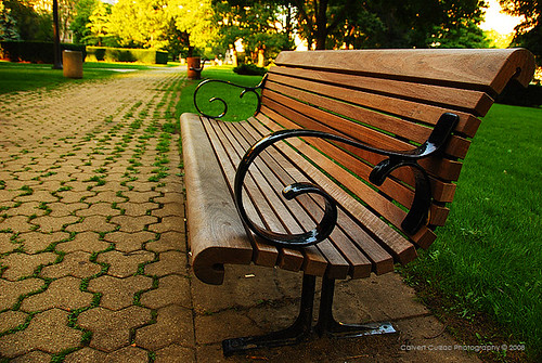 Image result for benches in park
