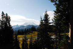 Mt. Rainier (MSHennessy) Tags: volcano mtrainier chinookpass stateroute410 washingtonstatescenery
