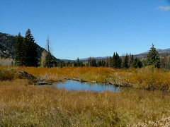 Mirror Lake Scenic Byway