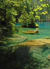 The beautiful Blausee, Switzerland (BelCan75) Tags: blue trees lake nature water landscape switzerland scenery rocks view clear kandersteg betterthangood