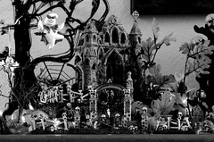 Mary Ellen's (Scary) America (kevin dooley) Tags: bw favorite usa white black building tree halloween monochrome beautiful grave souls america canon wow lens lost lights ellen high interesting scary fantastic flickr pretty village dynamic ltr very good gorgeous awesome cemetary low mary ghost pumpkins award sigma superior super best haunted explore most craggy page winner stunning excellent resolution much monsters mm 105 scared incredible range hdr breathtaking gremlins exciting tonal goblins decrepid phenomenal 40d maryellensamerica