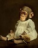 dreamy friends (Martine Roch) Tags: friends animal photoshop vintage monkey doll child antique dream surreal fairy photomontage imagination tortuga tortue manray handcoloured digitalcollage petitechose martineroch