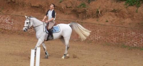 你拍攝的 2008.11.3淡水馬場上的騎士。