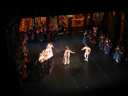 8372 - St Petersburg - Alexandrinsky Theater - Swan Lake