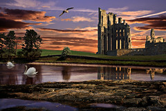 Colourful Dream (DDA / Deljen Digital Art) Tags: uk trees sunset england sky cloud lake colour nature water abbey grass fairytale photoshop sunrise reflections river pond rocks gull dream surreal dreaming created creation swans fantasy fantasia blended imagination layers photographicart movieset imaginative blend sixlayers layered imaginatory