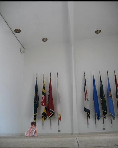 maya_arizona_flags