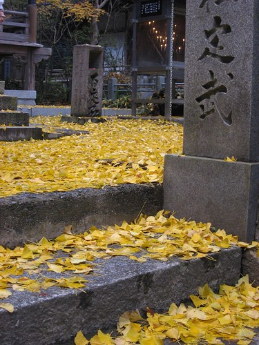 Autumn in the temple-12