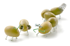 A Bug's Life... (RR) Tags: food white playing silly cute verde green art kitchen goofy yellow dinner bug insect fun during interestingness funny play with steel joke nail humor olive clips tasty humour bugs we clip explore whitebackground nails inseto olives prego them ate lead oliva tale cozinha brincadeira anthropomorphic jest playingwithfood divertido playfood azeitona pregos aceituna anthropomorph zeytin azeitonas explored ihopeso antropomrfico i partofthe mwhahaha mywinners antropomorfico anthropomorphe onasidenote playingwiththefood diditmakeyousmile nudeolives spreadhumorcoalition brincandocomacomidablog