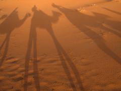 Desierto Erg Chebi, Marruecos (imagotipo) Tags: arena desierto marruecos sombras dunas camellos cruzadas ergchebi ltytr1