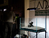 TGM ADA Demo - Main stone placed (Stu Worrall Photography) Tags: green ada tank stu machine demonstration meet planted aquascaping tgm stuworrall ukaps ukapsorg worralltgmthegreenmachineadademonstrationplantedta