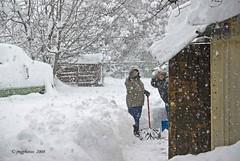Digging Out The Neighbor (jimgspokane) Tags: snow spokane potofgold onlythebestare naturewatcher excapture
