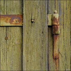 Rostiges Scharnier / Rusty Hinge (digitus_malus) Tags: door hinge wood rust paint tor nikkor rost holz farbe tuer d300 rhizome scharnier 1685mmf3556gvr 1685vr