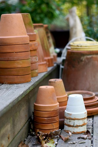 Terra-cotta pots by Chiot's Run.