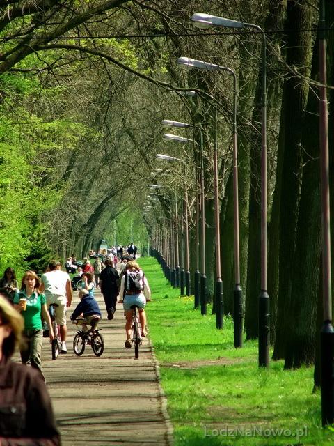 Park na Zdrowiu