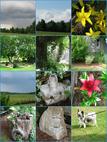 Fran's Garden Mosiac