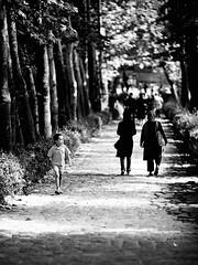 Boy walking in the park - Tehran (damonlynch) Tags: park boy people blackandwhite bw tree nature garden children persian women iran path islam religion headscarf hijab iranian tehran shiite jamshidiyehpark