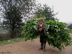 (///Negin Kiani) Tags: happy photo sad oldman mazandaran aks  toor   valg   tabar  lifeislife   photoneginkiani   mazeroon    abbasaliabbasi