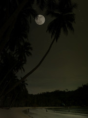 My own full moon party at Koh Kut (Bn) Tags: topf50 quality topf300 fullmoon palmtrees topf100 topf200 fullmoonparty kohkood vollemaan themoulinrouge blueribbonwinner shootthemoon lonelybeach littlestories supershot 100faves 50faves 200faves flickrsbest 35faves golddragon 300faves sterrenhemel worldbest easternthailand theunforgettablepictures theunforgettablepicture kohkut sleepingearth picswithsoul 19july2008 kohkutisland starsinthenight watchingthestarsbynight nearbycambodiaborder kohkutbynight kohkoodresortandspa bangboabay