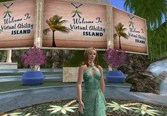 Virtual Ability Island Opening