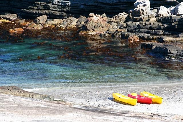 day 4: kayaks