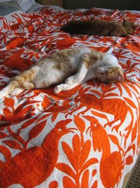 jacaranda quilt