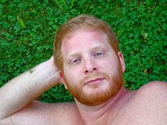 green eyes in the grass (redjoe) Tags: breakfast outdoors bed vermont meadow frog redjoe joehorvath