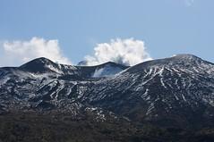 十勝岳を見上げる