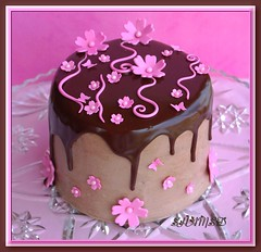 Chocolate Mud Cake (~Trs Chic Cupcakes by ShamsD~) Tags: pink flowers beautiful cake southafrica nikon candy mud chocolate ganache pietermaritzburg goreous shamsd proudlysouthafrica shamimadesai madeinsouthafrica cakesfromsouthafrica cakesinpietermaritzburg